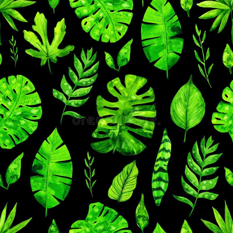 Предпосылка картины тропических листьев акварели безшовная иллюстрация вектора