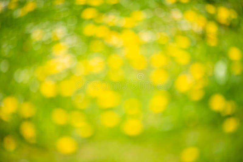 Предпосылка конспекта весны, запачканный свет солнца - bokeh Зеленые и желтые точки стоковое фото rf