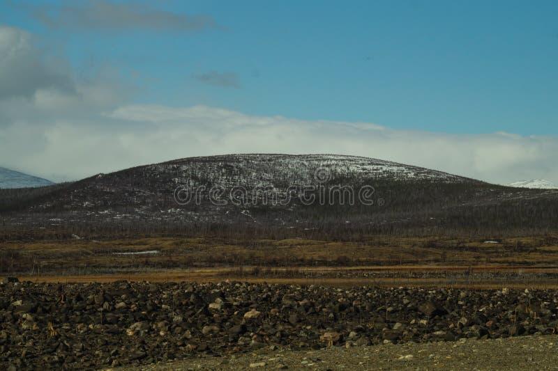 Предпосылка ландшафта горы снежные холмы и лес стоковые фото