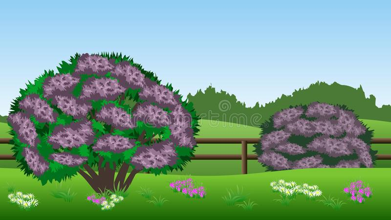 Предпосылка ландшафта лета с кустами сирени, холмами, травой, штырем бесплатная иллюстрация