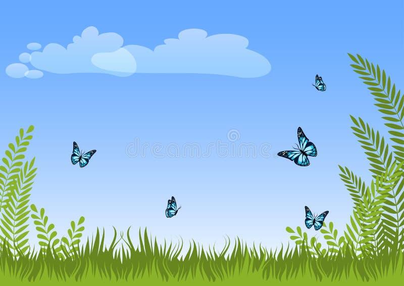 Предпосылка ландшафта луга лета естественная с зеленой травой, заводами, голубыми бабочками и небом иллюстрация штока