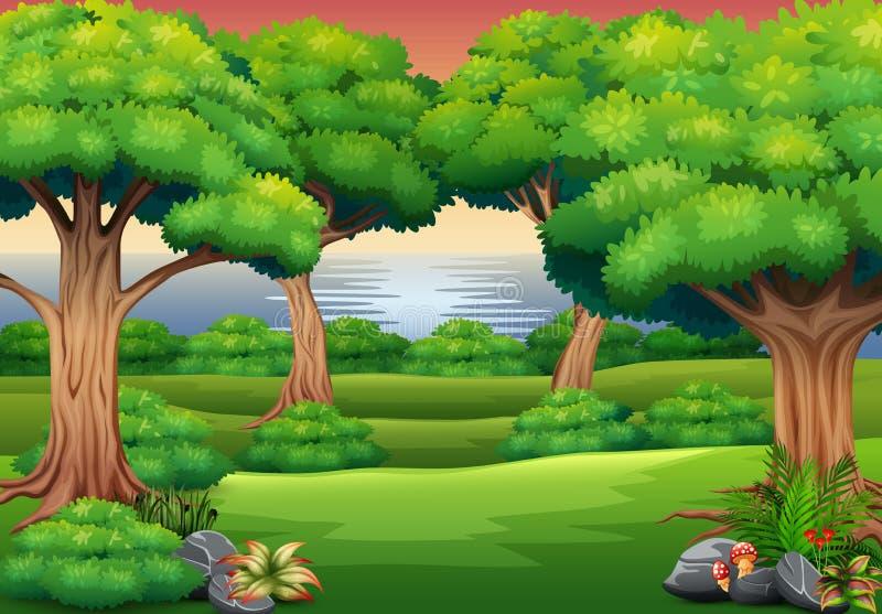 Предпосылка леса со сценой природы иллюстрация вектора