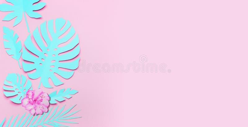 Предпосылка листьев и цветков бирюзы тропическая Бумажные тропические листья на розовой предпосылке Творческий составлять в пасте стоковая фотография rf