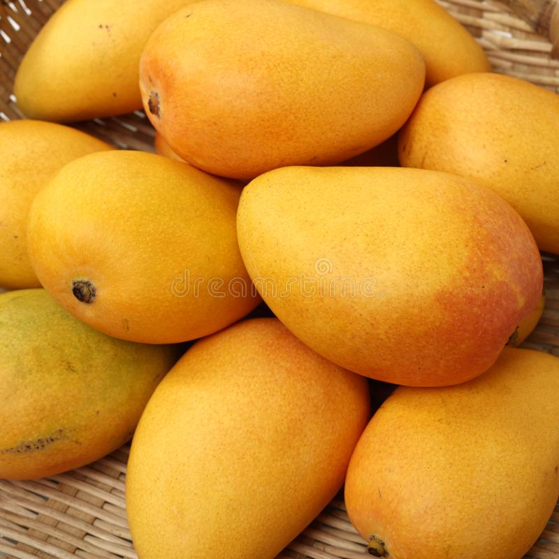 Предпосылка манго стоковая фотография