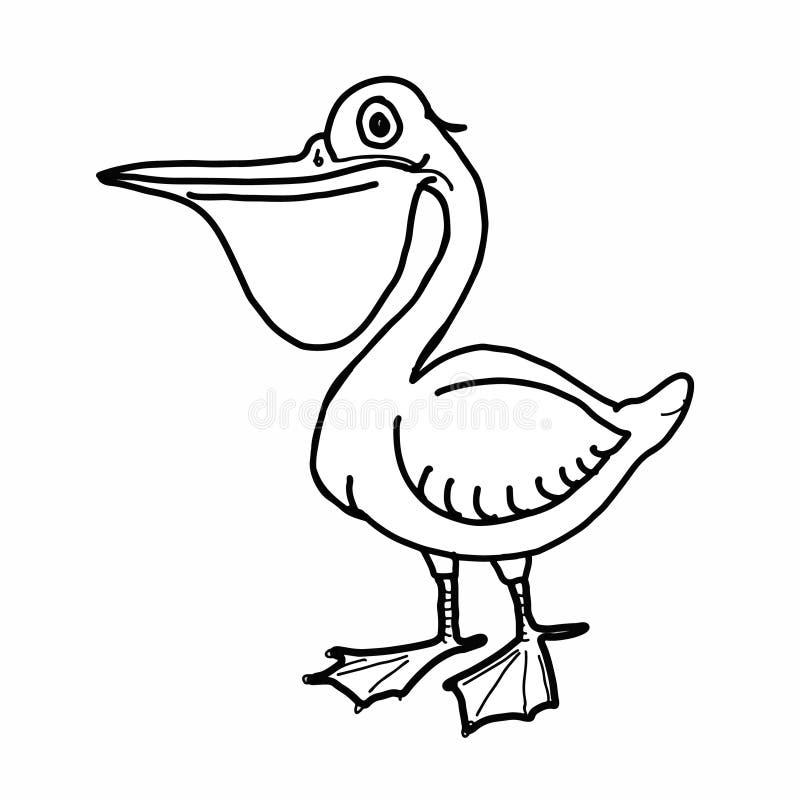 Предпосылка милой иллюстрации шаржа пеликана рисуя белая иллюстрация вектора