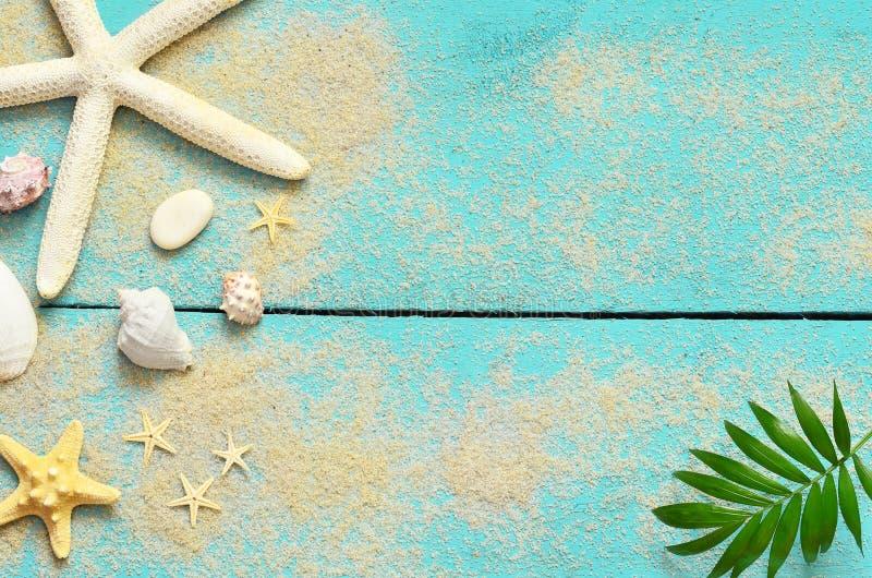Предпосылка моря лета Seashells, морские звёзды и ладонь разветвляют на деревянной голубой предпосылке стоковое фото rf