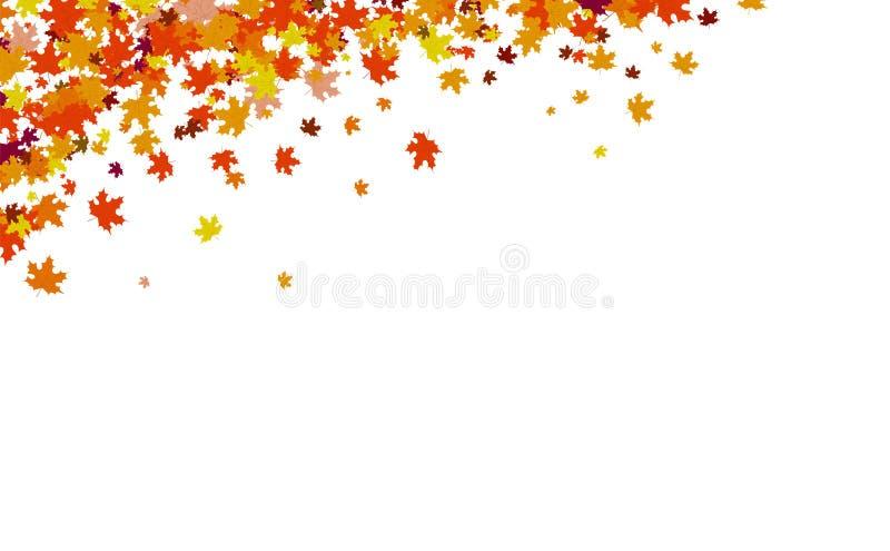 Предпосылка осени, концепция благодарения, кленовые листы разбрасывает группу в иллюстрации вектора природы иллюстрация вектора
