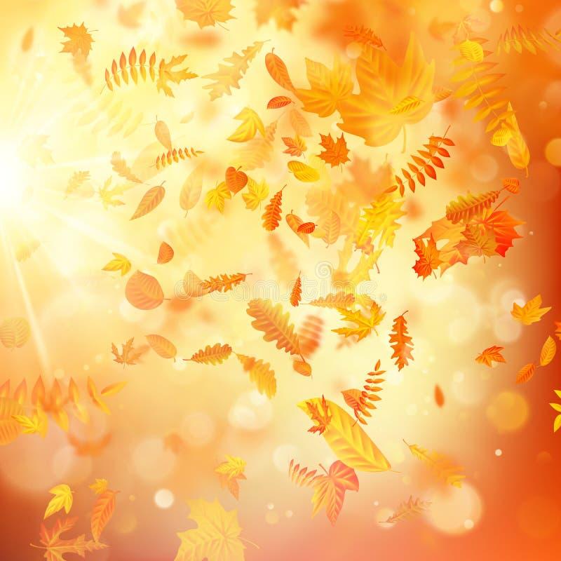Предпосылка осени с естественными листьями и ярким солнечным светом 10 eps иллюстрация вектора