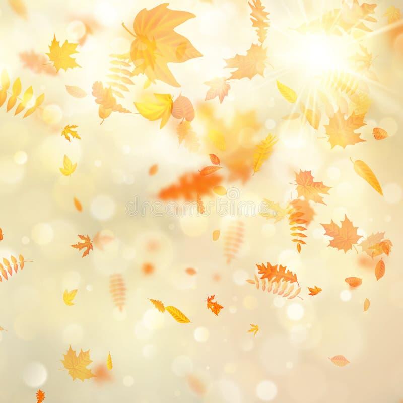 Предпосылка осени с естественными листьями и ярким солнечным светом 10 eps бесплатная иллюстрация