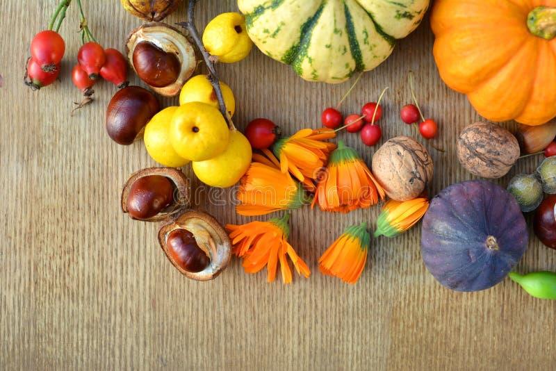 Предпосылка осени с тыквами, плодоовощами и гайками стоковая фотография
