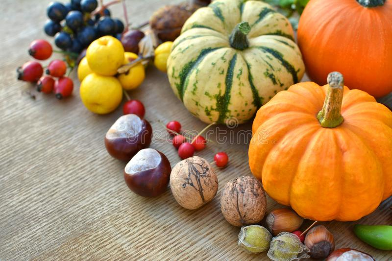 Предпосылка осени с тыквами, плодоовощами и гайками стоковые изображения rf