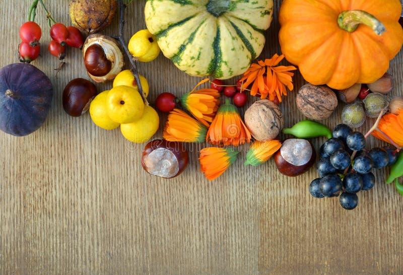 Предпосылка осени с тыквами, плодоовощами и гайками стоковые изображения