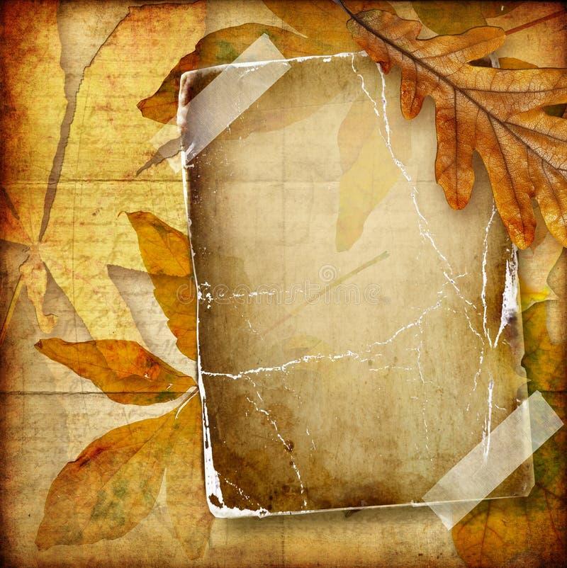 предпосылка осени стоковое фото rf