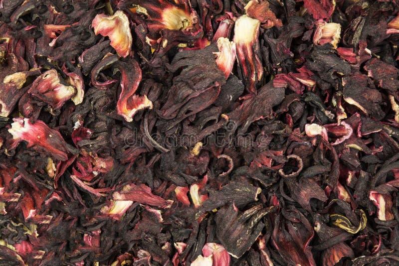 Предпосылка от лепестков суданской розы красного цвета стоковое изображение rf