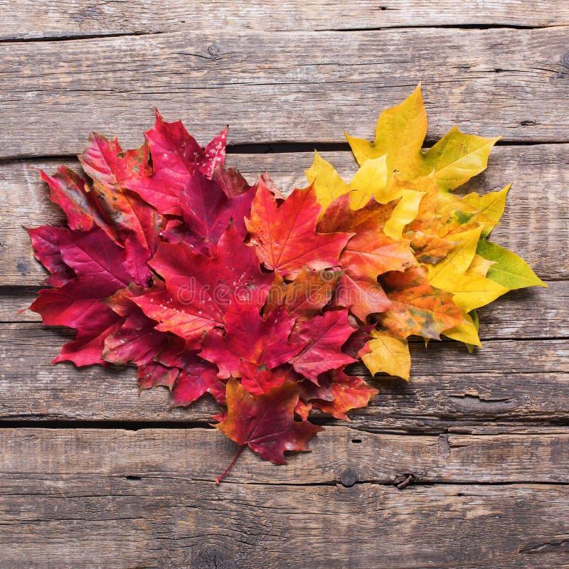 Предпосылка падения листьев сердца деревянная винтажная стоковая фотография rf