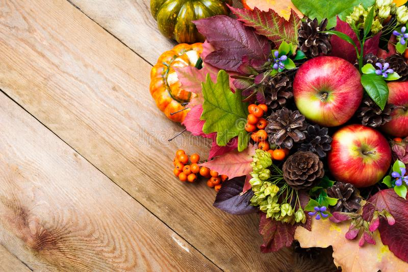 Предпосылка падения с голубыми цветками и красочными листьями, spac экземпляра стоковые изображения