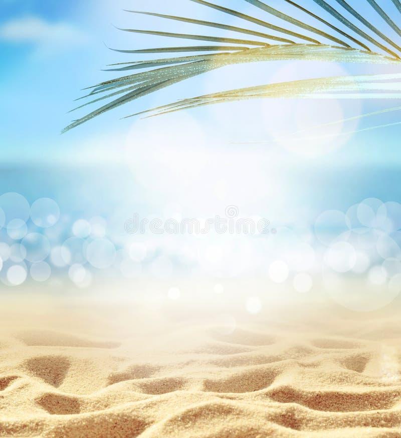 Предпосылка пляжа лета Песок, лист ладони, море и небо стоковое фото rf