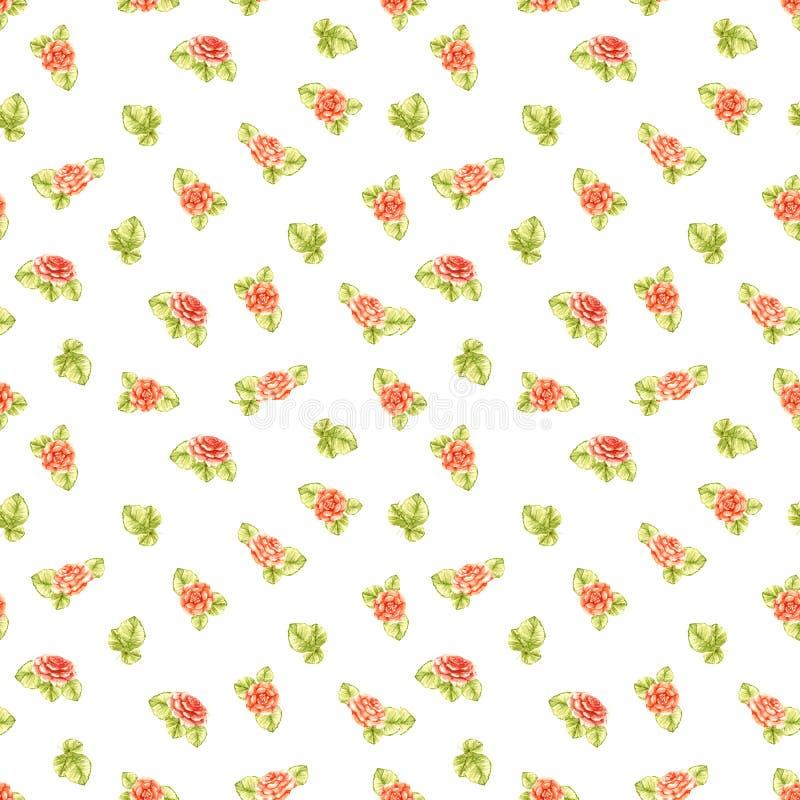 Предпосылка повторять розы персика оранжевые при картина цвета оливк листьев красивая цвета свет изолированная на белой предпосыл иллюстрация вектора