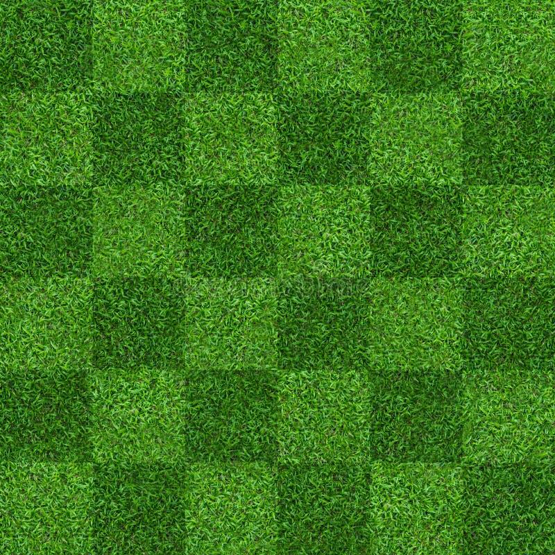 Предпосылка поля зеленой травы для спорт футбола и футбола Зеленая предпосылка картины и текстуры лужайки Конец-вверх стоковая фотография