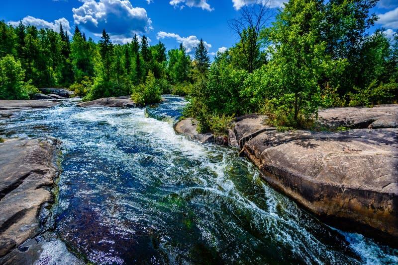 Предпосылка реки и леса глуши белой воды стоковая фотография rf