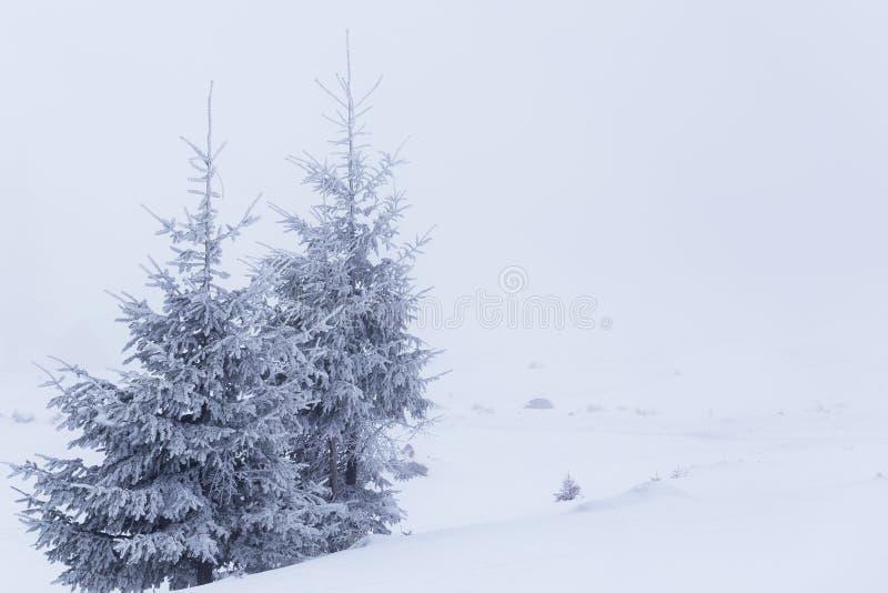 Предпосылка рождества и Нового Года с деревьями зимы и коттедж покрыли со свежим снегом в горах - волшебным backgroun праздника стоковая фотография