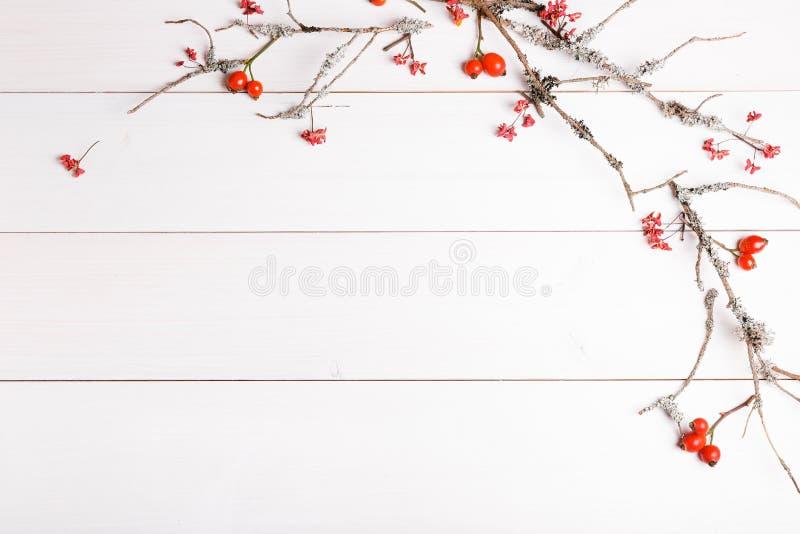 Предпосылка рождества, Нового Года или осени, плоский состав положения орнаментов рождества естественных и ель разветвляют, ягоды стоковые изображения