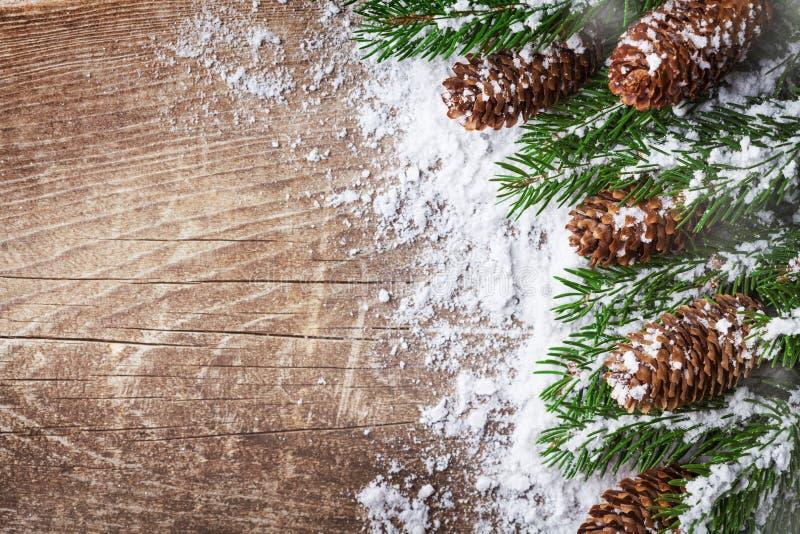 Предпосылка рождества со снежными ветвями и конусами ели Знамя праздника стоковая фотография rf