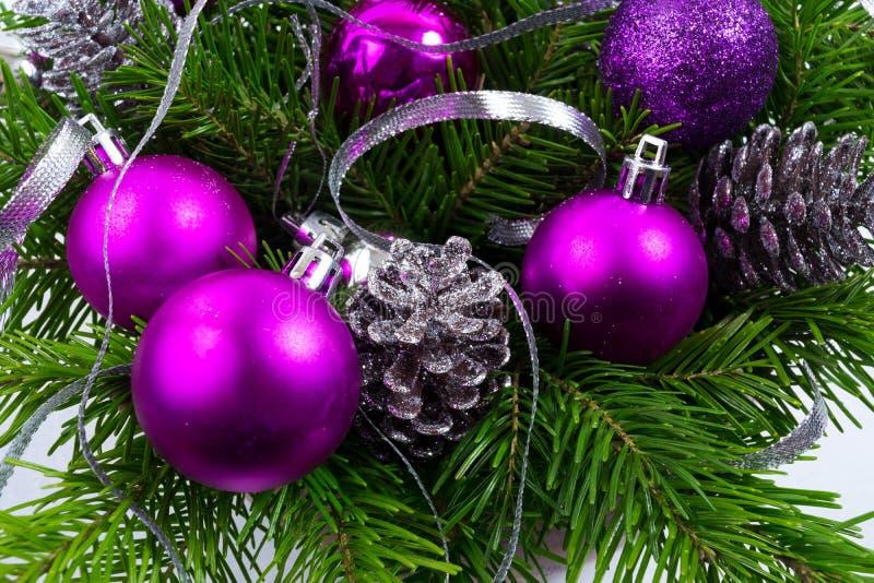 Предпосылка рождества с зеленой ветвью ели и фиолетовыми орнаментами стоковое изображение rf