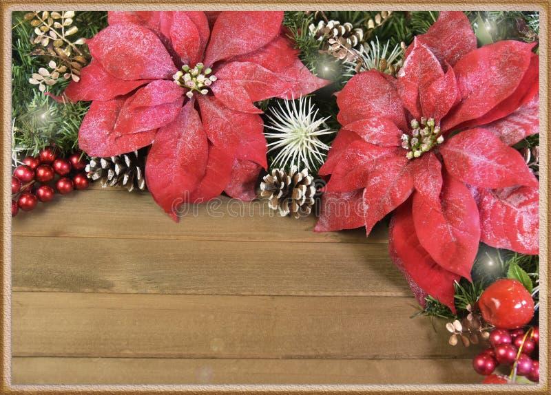 предпосылка рождества poinsettia и поздравительная открытка стоковая фотография rf