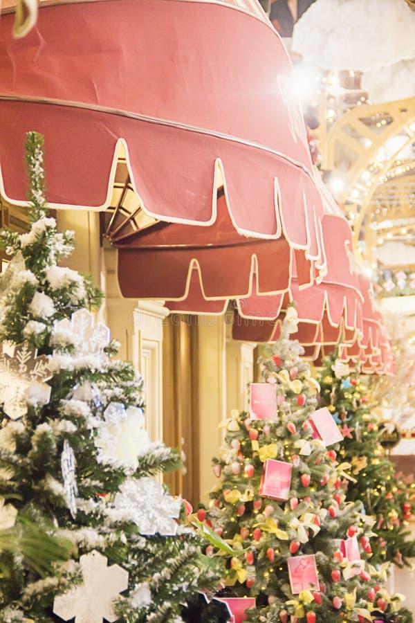 Предпосылка рождественской елки и оформление рождества Много различных елей в моле, украшение ресторана, кафе стоковые фото