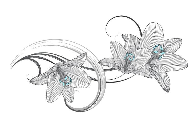 предпосылка Рук-чертежа флористическая с лилией цветка также вектор иллюстрации притяжки corel стоковая фотография rf