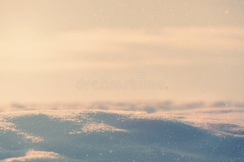 предпосылка снега естественная Текстура зимы естественная стоковое фото