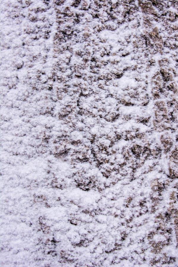 Предпосылка снега на дереве стоковая фотография rf