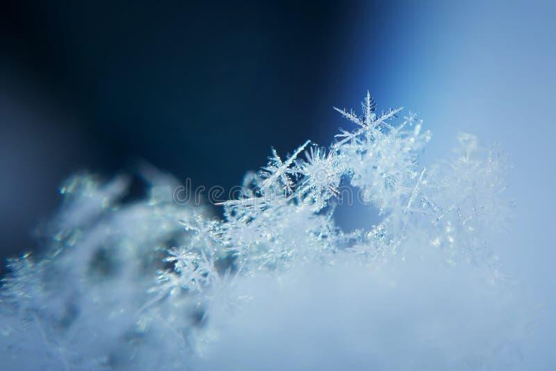 Предпосылка снежинки, замороженная зима Крупный план, макрос стоковые фотографии rf
