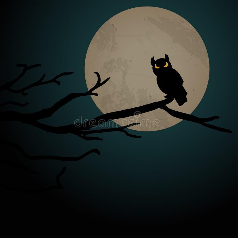 Предпосылка сыча хеллоуина страшная иллюстрация штока