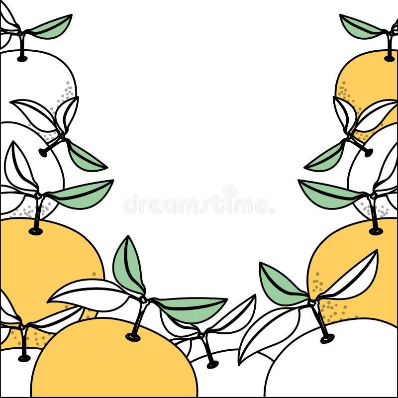 Предпосылка с разделами цвета оранжевых плодов иллюстрация вектора