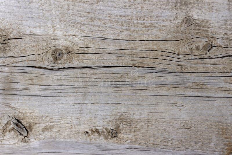 Предпосылка, текстура, деревянная поверхность, естественная не обработанная древесина, иллюстрация вектора
