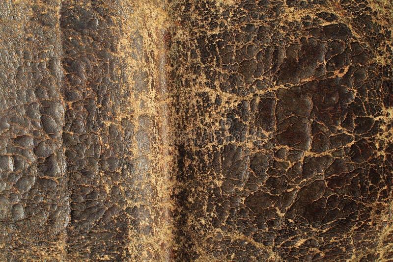 Предпосылка текстуры естественной кожаной структуры материальная абстрактная стоковые изображения rf