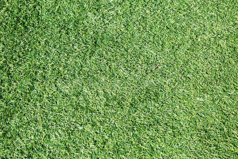 Предпосылка травы faux зеленой Предпосылки текстуры стоковые изображения rf