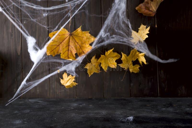 Предпосылка хеллоуина открытого космоса для вашего украшения и паутины на деревянном космосе стола стоковое изображение