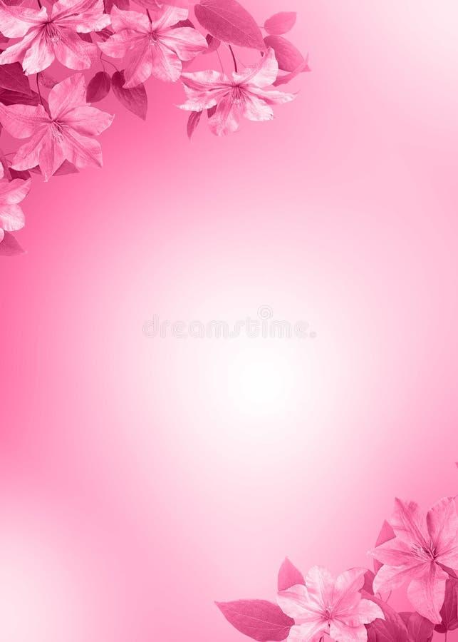 предпосылка цветет пинк иллюстрация вектора