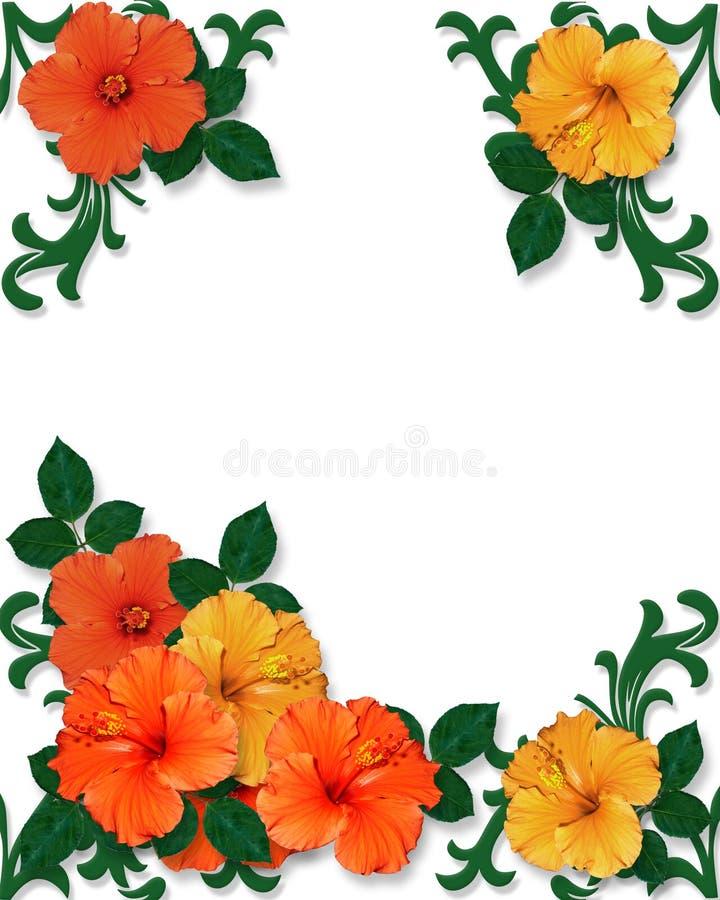 предпосылка цветет hibiscus тропический иллюстрация вектора
