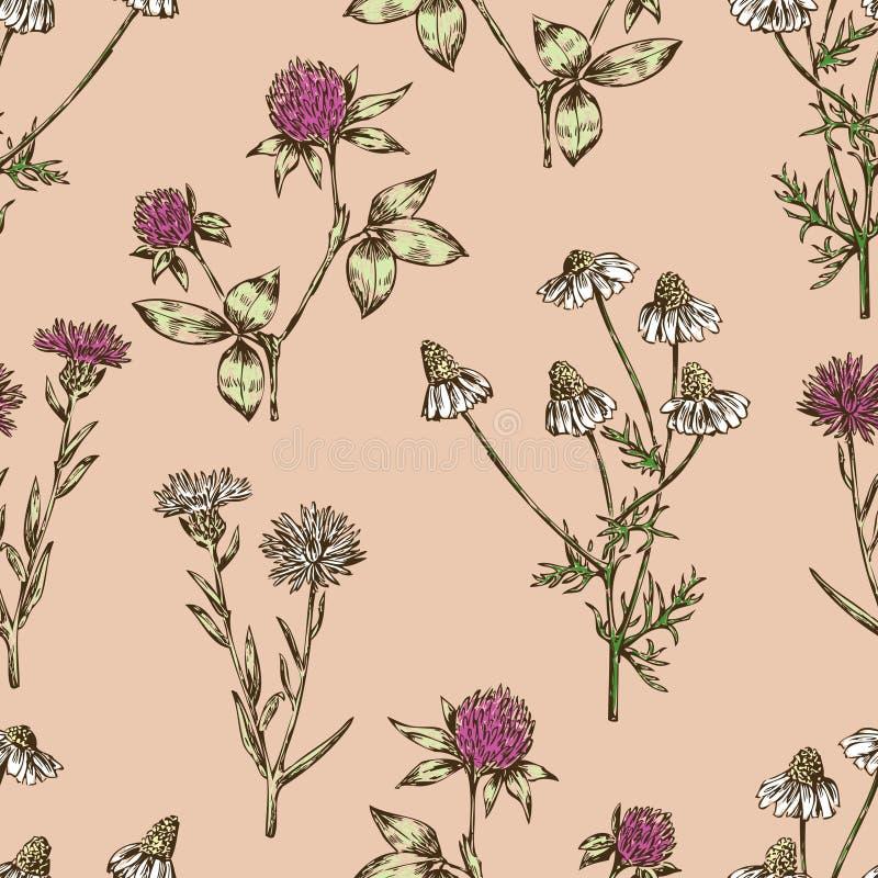 Предпосылка цветков луга бесплатная иллюстрация