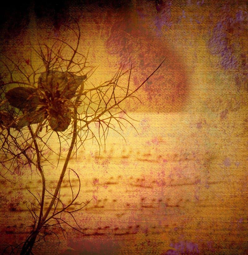 Предпосылка, цветок и счет год сбора винограда стоковые фотографии rf