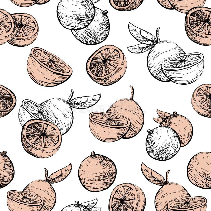Предпосылка цитрусовых фруктов сочная Картина цитруса безшовная с апельсинами иллюстрация вектора
