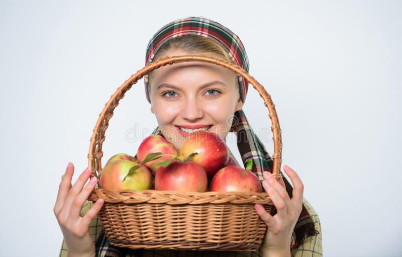 Предпосылка яблока владением загородного стиля садовника девушки белая Здравоохранение и питание витамина Идеальное яблоко t стоковое изображение