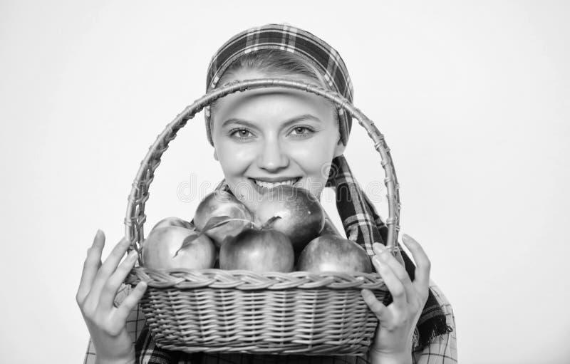 Предпосылка яблока владением загородного стиля садовника девушки белая Здравоохранение и питание витамина Идеальное яблоко t стоковая фотография rf