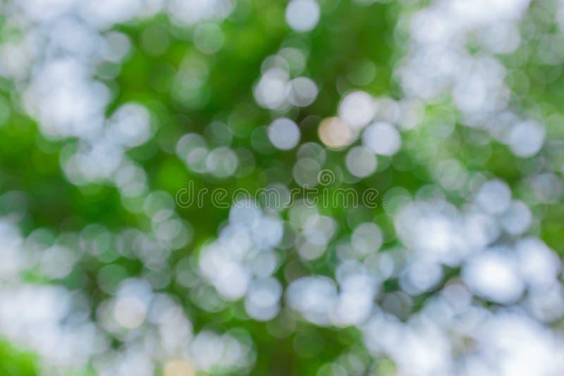 Предпосылка Bokeh зеленого цвета конспекта естественная стоковое изображение rf