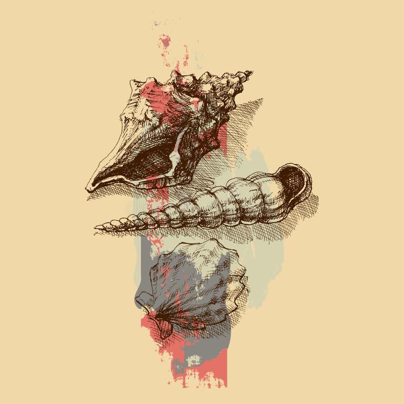 Предпосылка Seashells иллюстрация вектора