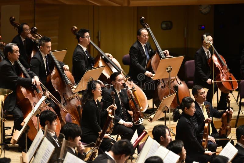 Представление симфонизма в концертном зале стоковое изображение rf